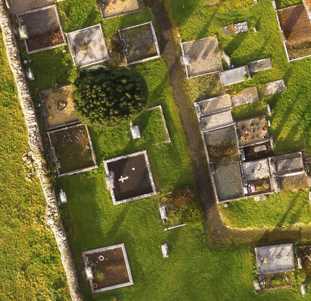 Extract from Kilbeacanty Old Graveyard orthophotography
